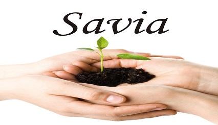 Savia Ingtecnova